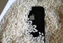 上海苹果维修点教你手机进水了怎么处理-手机维修网